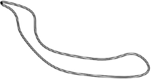 Accessoires de supports de roue - Boucle de sécurité en nylon